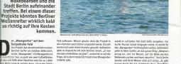 Strassenfeger Wavegarden Surf in Berlin bericht