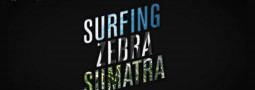 Surfing Zebra Sumatra Movie