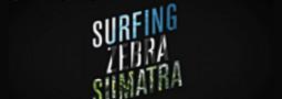 Surfing Zebra Kreuzberg