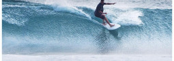 Neal Purchasejnr The Duo Surfboard Surfshop