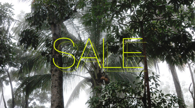 SALE-gross-ETE-CLOTHING