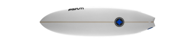 Fatum Fish Surfboards Axiom Wellenreiter