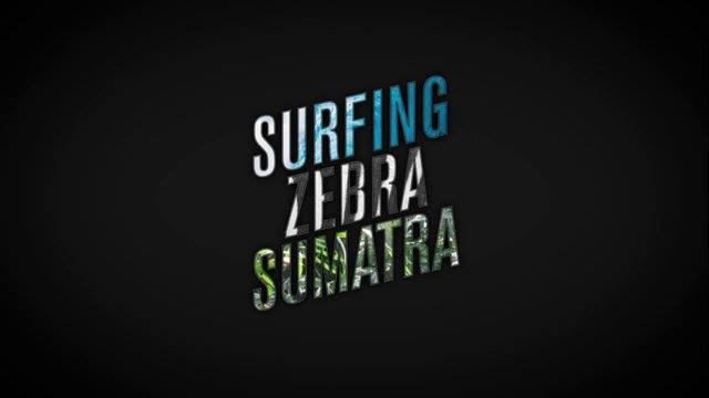 Surfing zebra Sumatra Logo